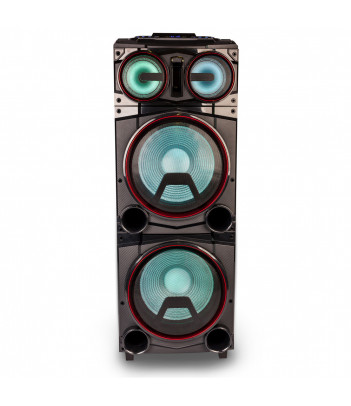 Głośnik DJ NGS Wild Punk 3