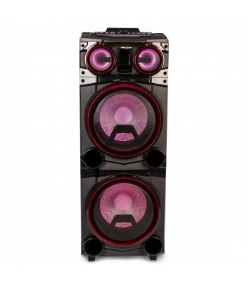 Głośnik DJ NGS Wild Punk 2