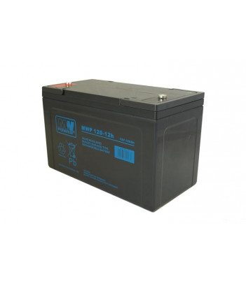 Akumulator żelowy MW Power MWP120-12H Long Life (12-letni)