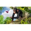 Gra Xbox One Zoo Tycoon